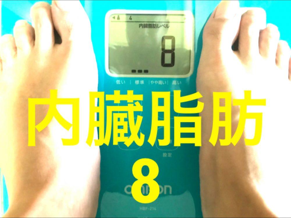 酵素生活2週目 内臓脂肪